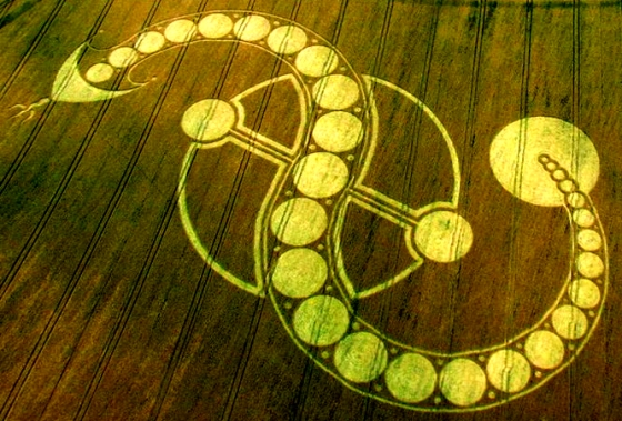Inverted-S-Shivas-Trishul-Trident-PSI-Symbol-Dragon-Cosmic-Serpent-Crop-Circle-West-Woodhay-Down-Wiltshire-29th-July-2011