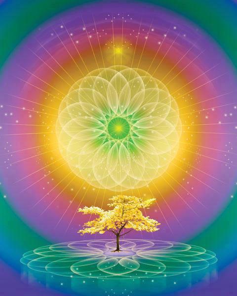 Madre divina este es el tiempo esperado curaci n del for Exterior no es la voz es clamor desde el alma