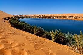 mantial desierto