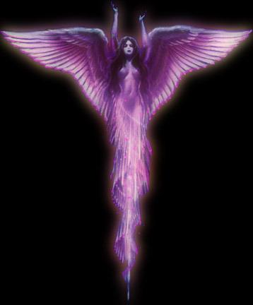 angel-llama-violeta