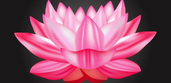 flor-loto-vectores-gratis