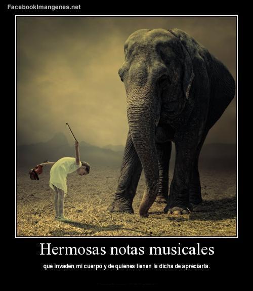 hermosas-notas-musicales