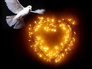 paloma-corazon-de-fuego