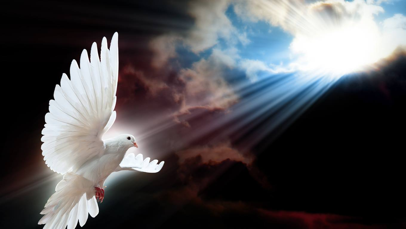 imagenes de angeles de dios reales - photo #8
