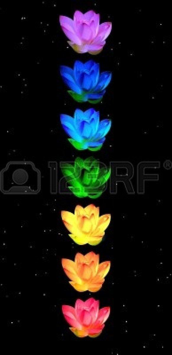 11690431-colores-de-los-chakras-de-la-flor-de-lirio-en-una-columna-en-el-fondo-de-la-noche