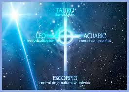 cruz card
