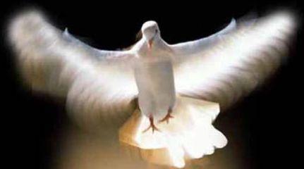espíritu santo 3