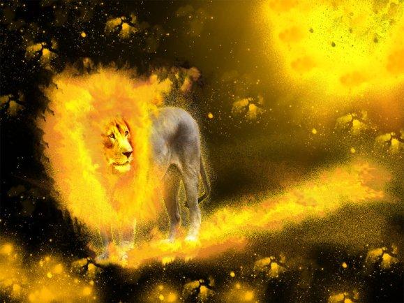 1125988__lion-fire_p